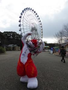 toyohashi zoo 2017 052